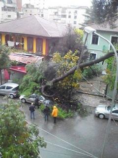 12240002_1744907019065725アルバニア ティラナで激しい風.jpg