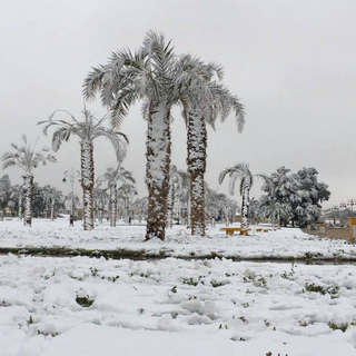 rafha-snow-saudi-arabia-5.jpg