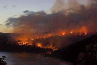 victoria-wildfire-australia-3.jpg